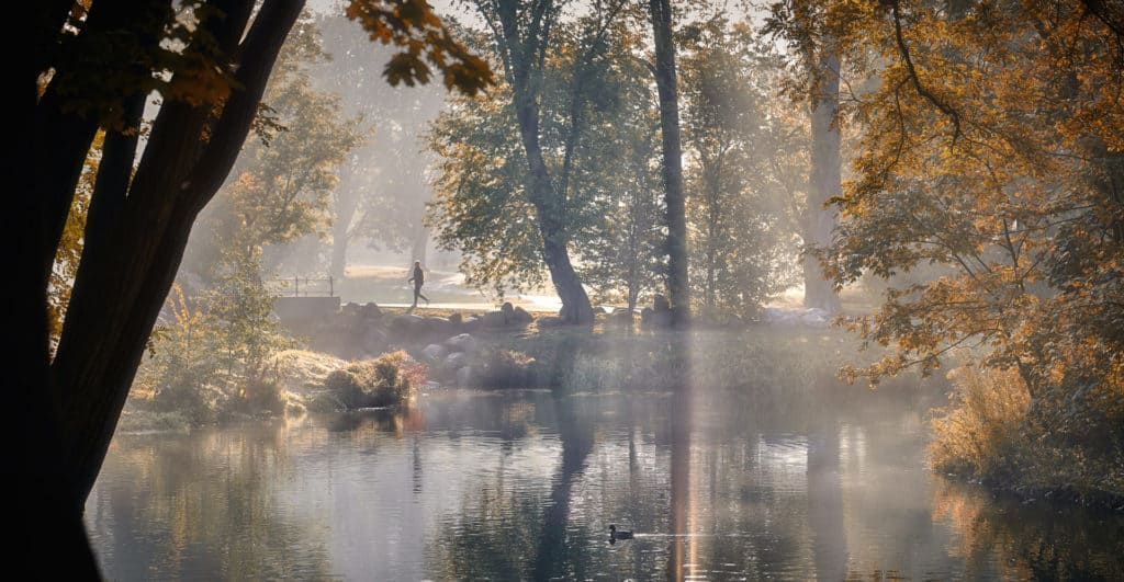 Jesienny Park Julianowski