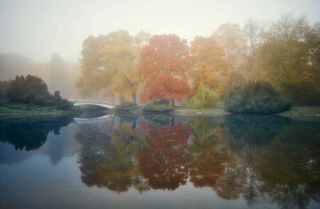 Jesienny Park Poniatowskiego
